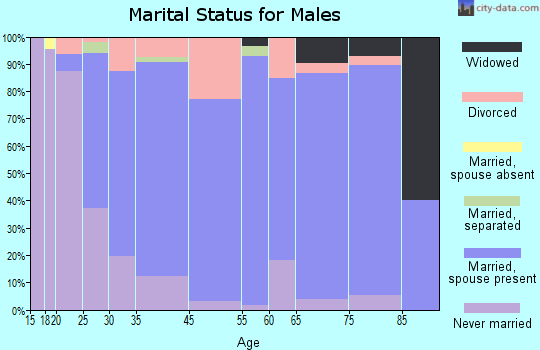 Pecatonica marital status for males
