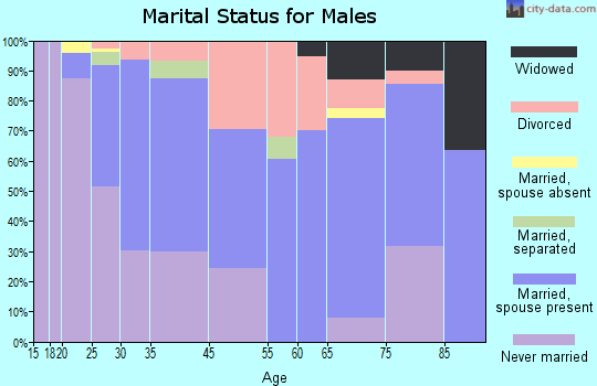 South Chicago Heights marital status for males