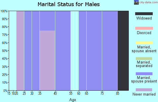 Elizabeth marital status for males