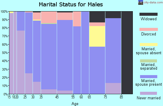 Georgetown marital status for males