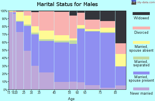 Michigan City marital status for males