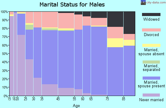 New Castle marital status for males