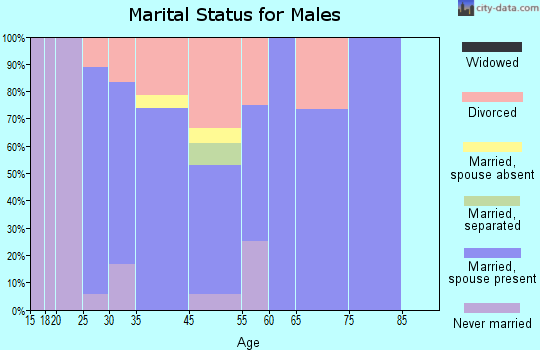 North Salem marital status for males
