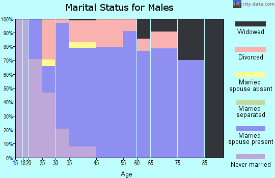 South Haven marital status for males