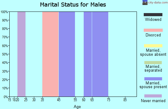 Willowbrook marital status for males
