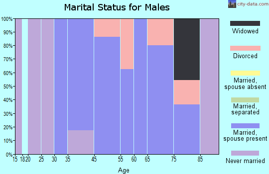 Druid Hills marital status for males