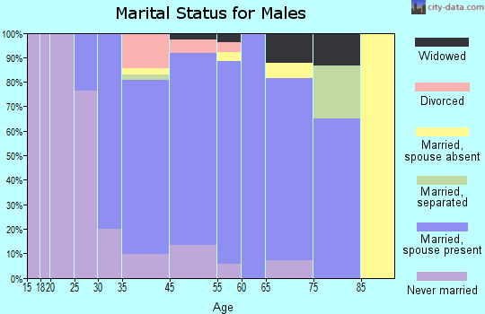 Bellingham marital status for males