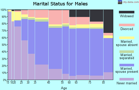 Fitchburg marital status for males