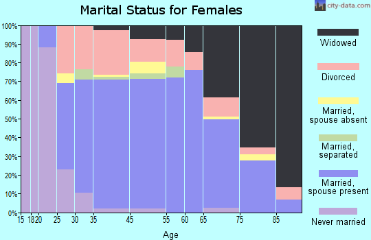 Elk Rapids marital status for females