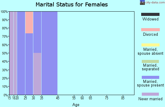 Boys Town marital status for females