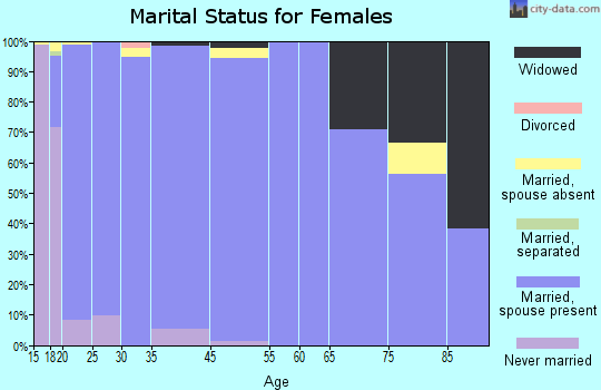 Kiryas Joel marital status for females