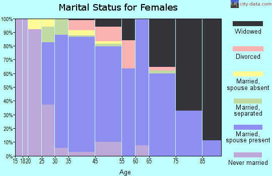 South Valley Stream marital status for females