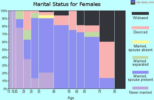 Palm Shores marital status for females