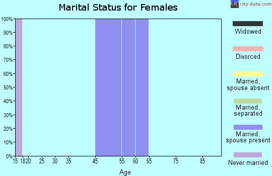 Willowbrook marital status for females