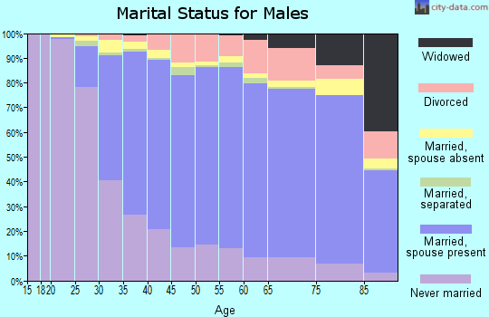 Fillmore County marital status for males