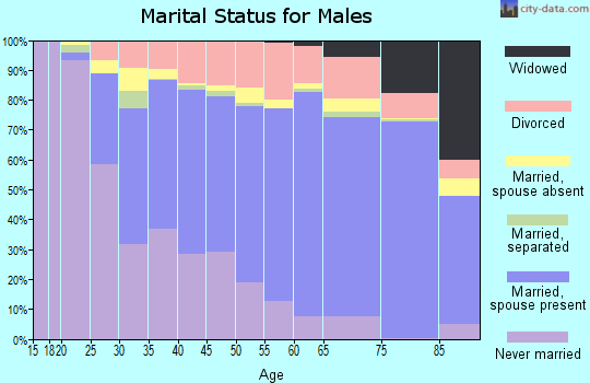 Berrien County marital status for males