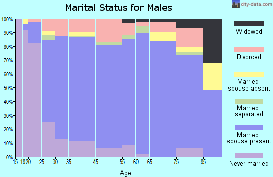 Dyer County marital status for males