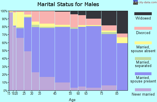 Dallas County marital status for males