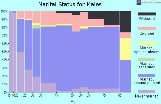 Fentress County marital status for males