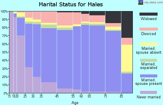 Holmes County marital status for males