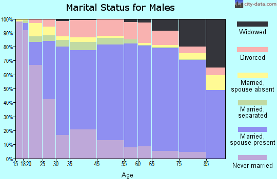 Hernando County marital status for males