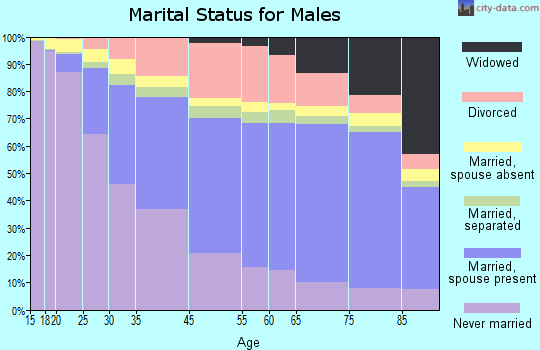 Jerome County marital status for males