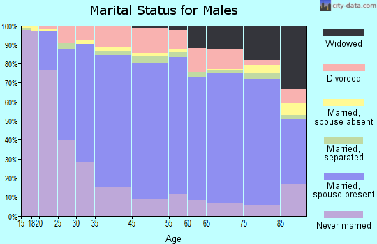 Decatur County marital status for males