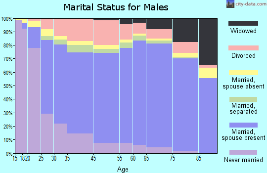 Burnet County marital status for males