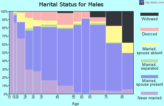 Dinwiddie County marital status for males