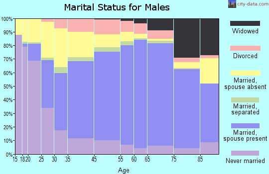 Grand Traverse County marital status for males