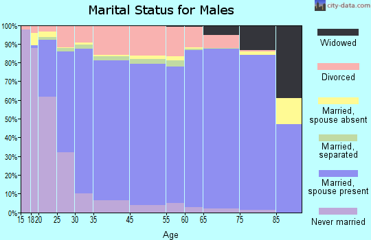 Allegan County marital status for males