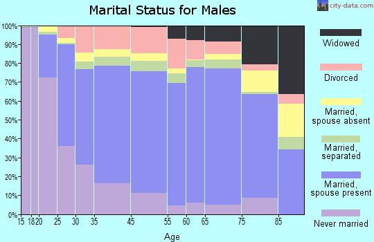 Adams County marital status for males
