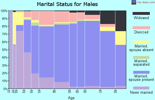 Fairfax County marital status for males