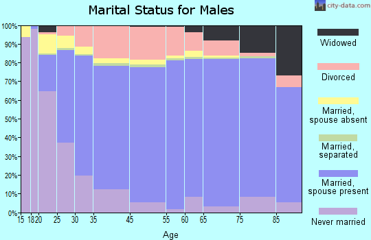 Indian River County marital status for males