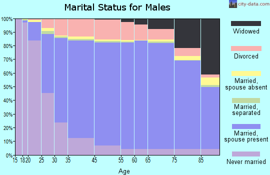 Itasca County marital status for males