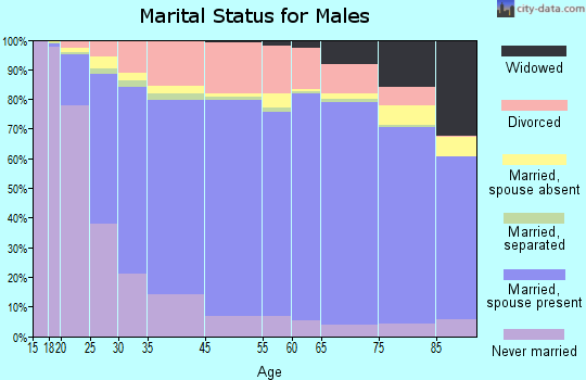 New York County marital status for males
