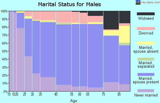 Huntingdon County marital status for males