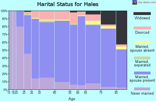 Hamblen County marital status for males