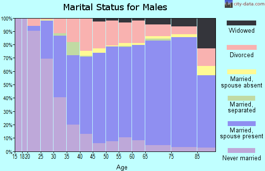 Hale County marital status for males