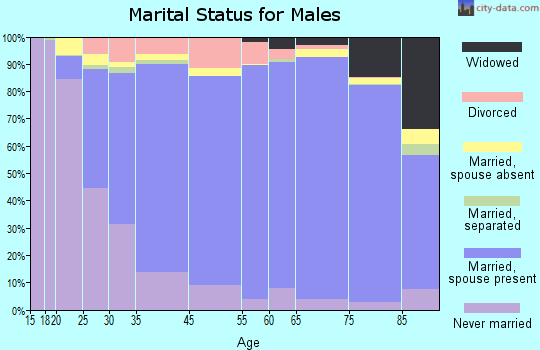 Clinch County marital status for males