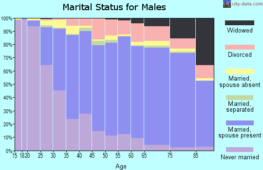 Kanabec County marital status for males