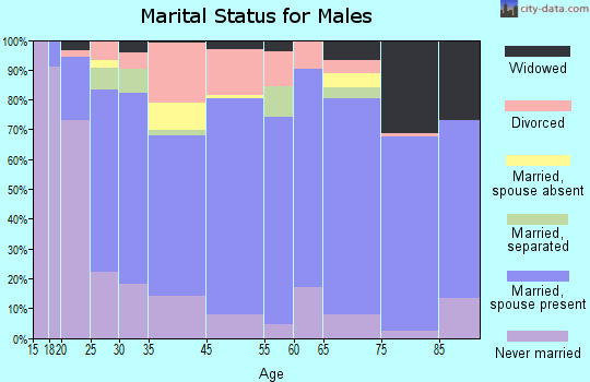 Floyd County marital status for males