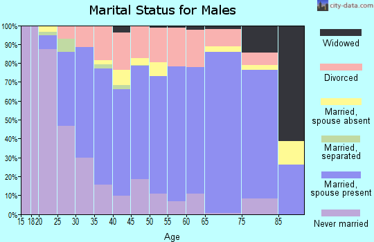 Denali Borough marital status for males