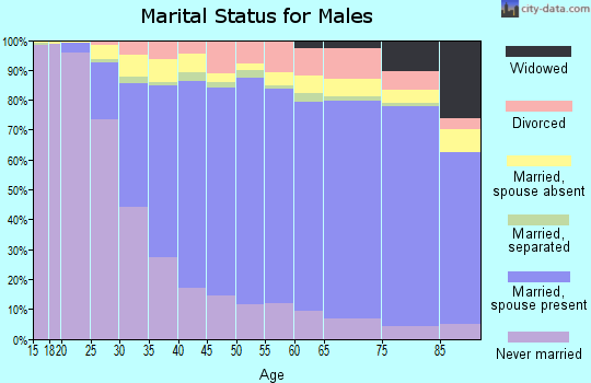 Fleming County marital status for males