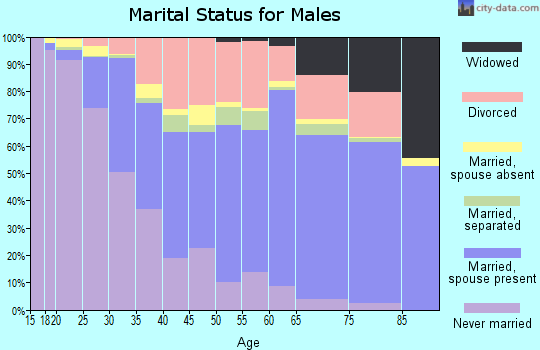 Leon County marital status for males