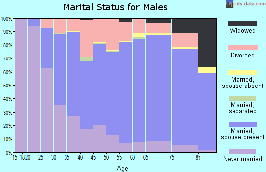 Lac qui Parle County marital status for males