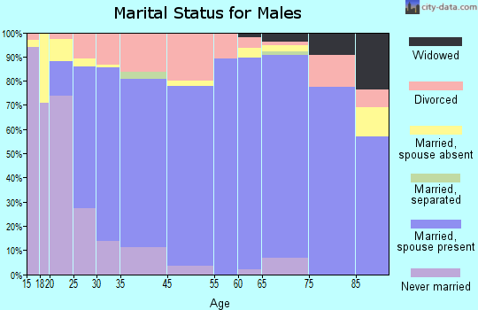 Kalamazoo County marital status for males