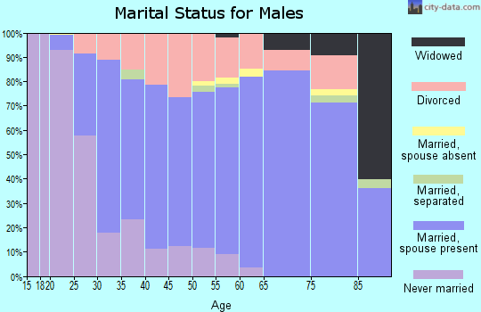Lehigh County marital status for males