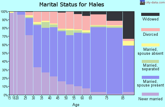 Kingsbury County marital status for males