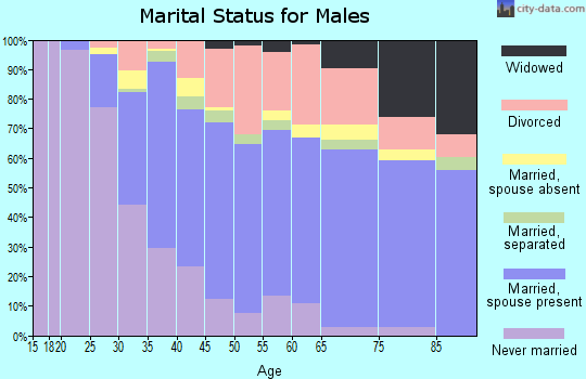 Adair County marital status for males